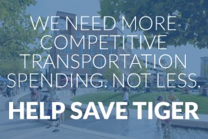 save-tiger-featured